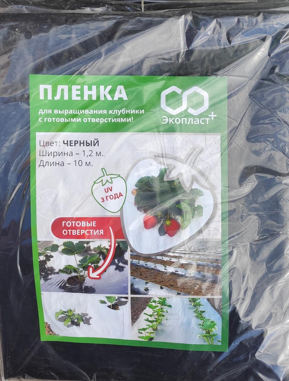 Плівка для вирощування полуниці з перфорацією чорна (1,2*10м)