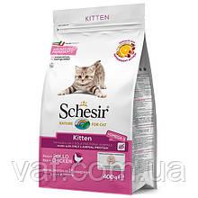 Cухой монопротеиновый корм для котят Schesir Cat Kitten Шезир Котенок Курица 1.5 кг
