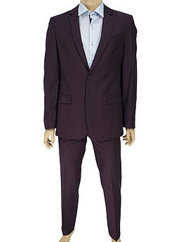Стильний чоловічий класичний костюм Legenda Class 2532#140