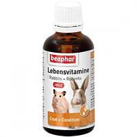 Beaphar Lebensvitamine - кормова добавка Біфар для гризунів 50 мл