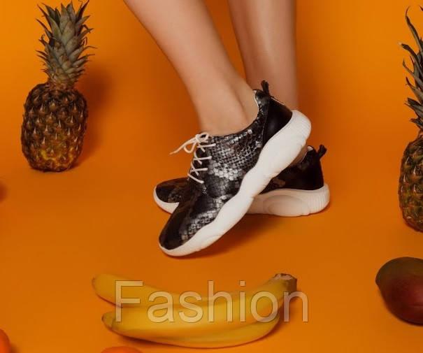 Шкіряні кросівки жіночі принт темна рептилія