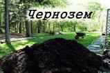 Коровяк (СЫПЕЦ) Удобрение, навоз с доставкой по Одессе и области, чернозем высочайшего качества, фото 2