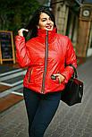 Стильна куртка жіноча демісезонна великих розмірів, фото 4