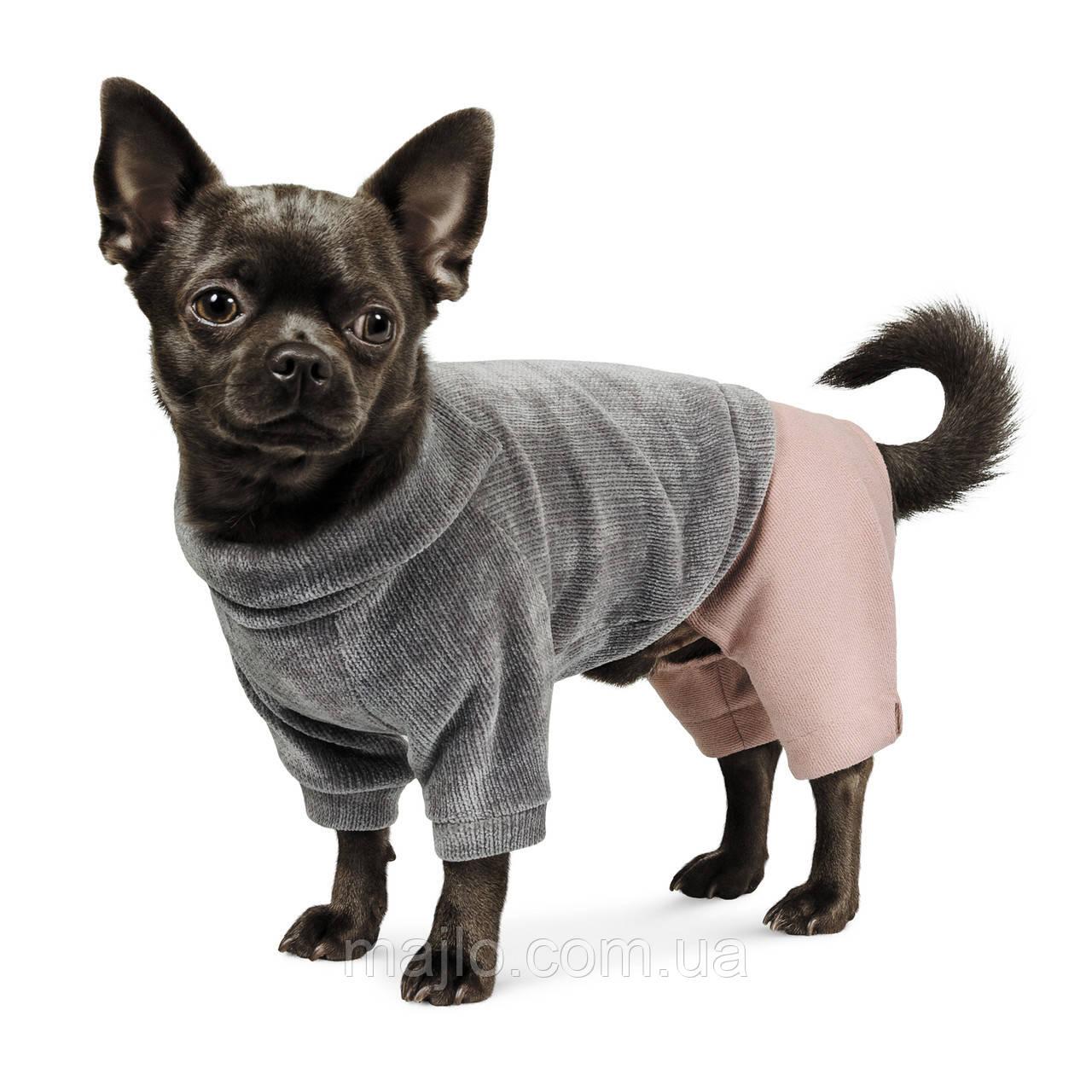 "Pet Fashion Костюм ""ПУНШ"" XS-2"