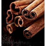 Чоловічі міні-парфуми Moment Yodeyma 15 мл (Яблуко Кориця Деревина) Тестер без упаковки, фото 3