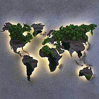 Карта Мира с подсветкой, гравировкой названий стран и границ, стабилизированный мох XS-100х60 см