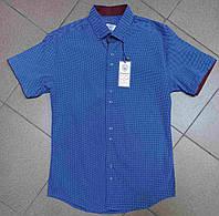 Рубашка мужская, S,M,L pp,  № 1504