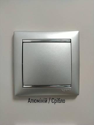 Розетка з заземленням алюміній з рамкою LEGRAND VALENA,, Франція, фото 2