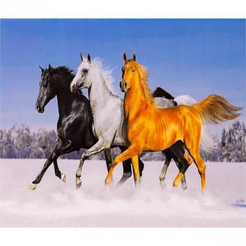 Алмазная мозаика 40х50 см DIY Тройка лошадей (SL 70553)