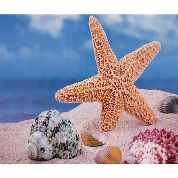 Алмазная мозаика 30х40 см DIY Морская звезда (SM 76273)