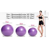 Фитбол (Мяч для фитнеса, гимнастический) глянец OSPORT 65 см (OF-0018) Фиолетовый, фото 2