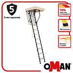 Горищні сходи Oman Mini Termo 80х70 мм H265, фото 2
