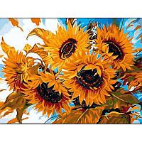 Картина малювання за номерами Babylon Квіти сонця 30х40см набір для розпису по цифрам у коробці, фото 1