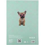 Щоденник шкільний, тверда обкл, Studio Pets-1 sp21-262-1, фото 6