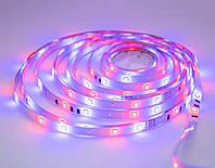 Диодная Led RGB лента 3528 біла на 4.5 метра, світлодіодна стрічка з пультом | светодиодная лента (GIPS)