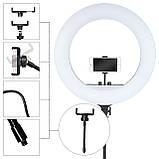 Кольцевая светодиодная LED лампа RL-21 55 см 3 крепления пульт сумка штатив кольцевой свет блогера фотографа, фото 4