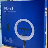 Кольцевая светодиодная LED лампа RL-21 55 см 3 крепления пульт сумка штатив кольцевой свет блогера фотографа, фото 10