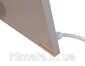 Керамическая панель обогреватель био-конвектор Венеция ПКИ 750Вт 120х60см, фото 3