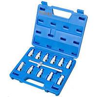 TJG.Набор головок для откручивания масляных пробок, 12 предм (K3093) (K3093)