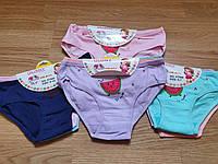 Трусы детские для девочек «Долька» до 10 лет (VT044)