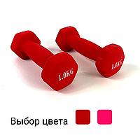 Гантели металлические с виниловым покрытием 2 шт по 1 кг для фитнеса (Комплект набор гантелей 2 кг)