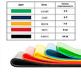 Гумки для фітнесу і спорту (стрічка еспандер) гумові петлі для ніг/рук/сідниць набір 5шт OSPORT (OF-0021), фото 4