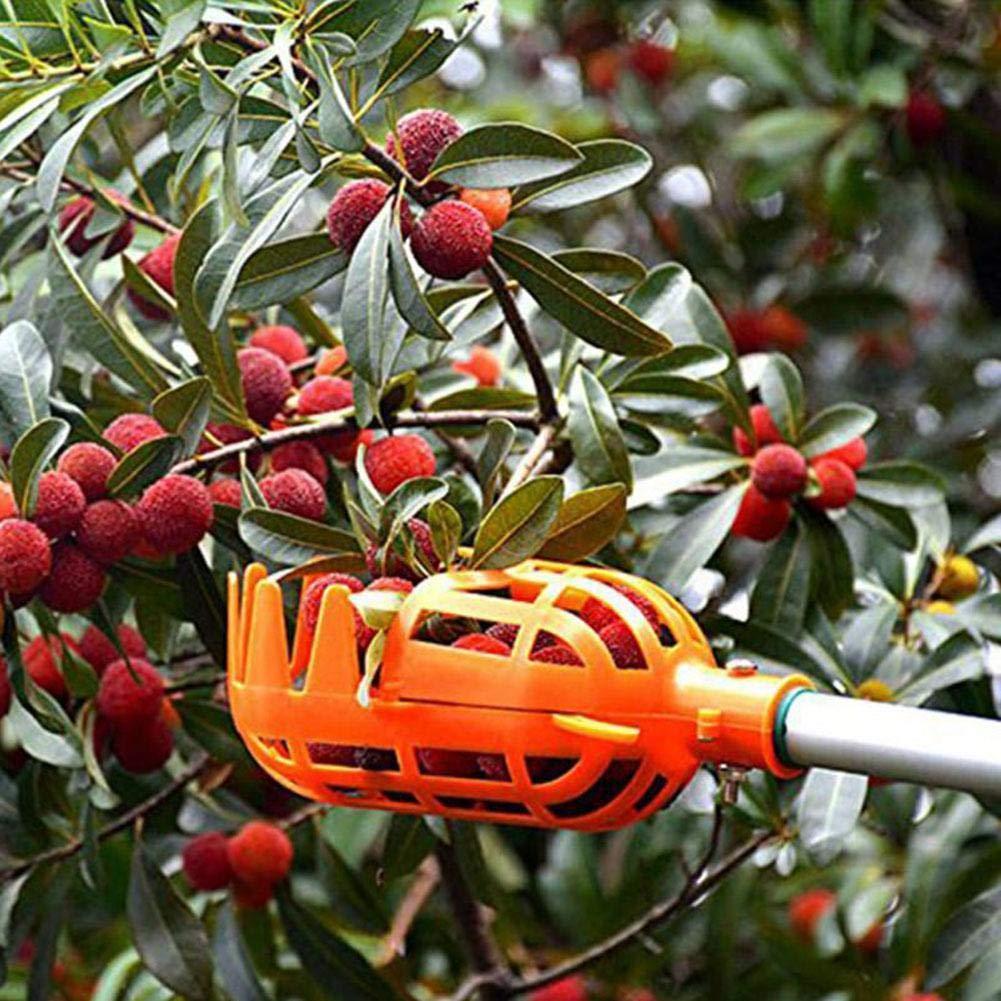 Інструмент для збору ягід і фруктів, плодознимач, кошик - збирач плодів з дерев