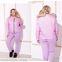 Куртка жіноча НОРМА в кольорах 81650