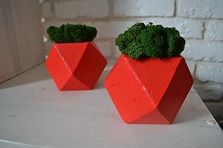 Кашпо з бетону та стабілізованого моху 14х11 декор для дому та офісу/оригінальний подарунок/ композиції з моху