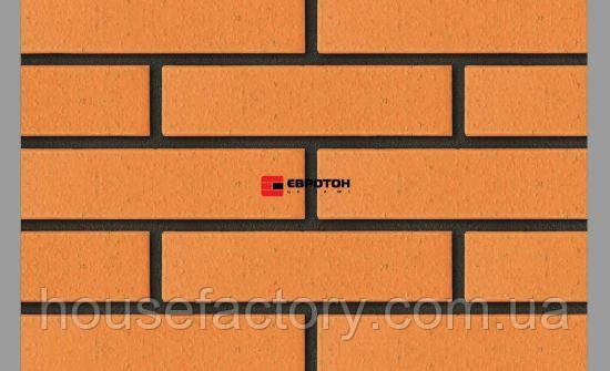 Евротон клинкерный кирпич Палермо 250*120*65мм