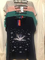 Жіноча футболка, 3XL-7XL рр.,  № 12140
