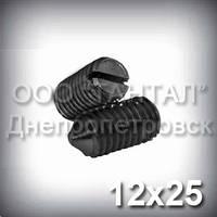 Винт М12х25 ГОСТ 1476-93 (DIN 553, ISO 7434) - гужон установочный с острым концом