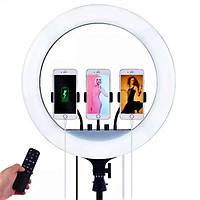 """Кольцевая лампа 45 см, 3 крепления + пульт в комплекте PROFESSIONAL RL-18 18"""" / Студийный свет"""