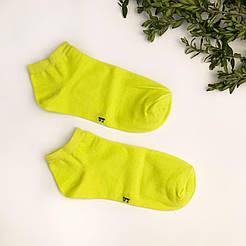 Короткие мужские носки V&T socks 27-29, желтые