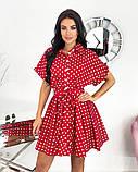 Короткий пудровое плаття в горошок з коротким рукавом 50-657-3, фото 3
