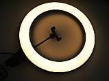 Кольцевая LED лампа A380 + Штатив тренога (40см 1 крепл.тел USB), фото 9
