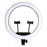 Кільцева LED лампа LS-360 з пультом + Штатив тринога (39див 220V 2 крепл.тел.), фото 2