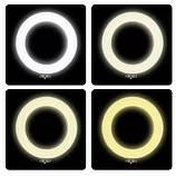 Кільцева LED лампа LS-360 з пультом + Штатив тринога (39див 220V 2 крепл.тел.), фото 3
