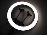 Кільцева LED лампа LS-360 з пультом + Штатив тринога (39див 220V 2 крепл.тел.), фото 9