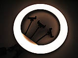 Кільцева LED лампа YQ-460B з пультом + Штатив тринога (45см 220V 3 крепл.тел.), фото 8