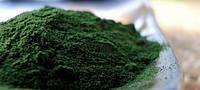 Лечебные водоросли