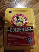 Препарат для потенции Golden Ant Золотой  Муравей