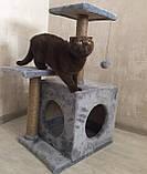 Когтеточка с домиком. Для кошек 46х36х80 см, фото 2