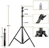 Набір постійного студійного світла Prolighting (50x70 див.+ Лампи 65 Вт.), фото 10