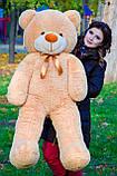 Плюшевий ведмедик колір: Капучино - 140 див., фото 4