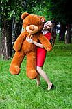 Плюшевий ведмедик колір: Капучино - 140 див., фото 5