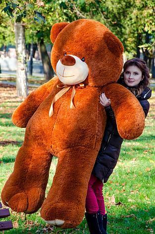 Великий плюшевий ведмідь Коричневий 200 див.