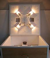 Инкубатор Курочка Ряба 130 с усиленной стенкой из пластика (цифровой терморегулятор)