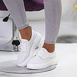 Модні повсякденні білі жіночі кросівки натуральна шкіра з перфорацією, фото 9