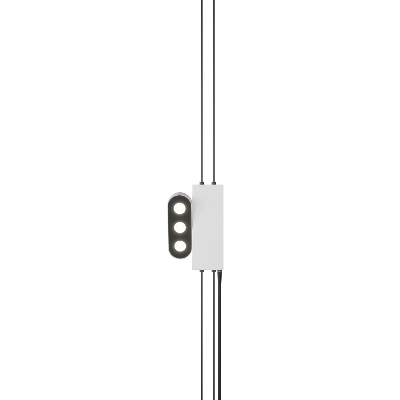 Настенный светильник Premium Skarlat RLL2002 3х2W WH+BK 3000K